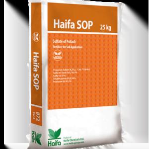Haifa SOP™